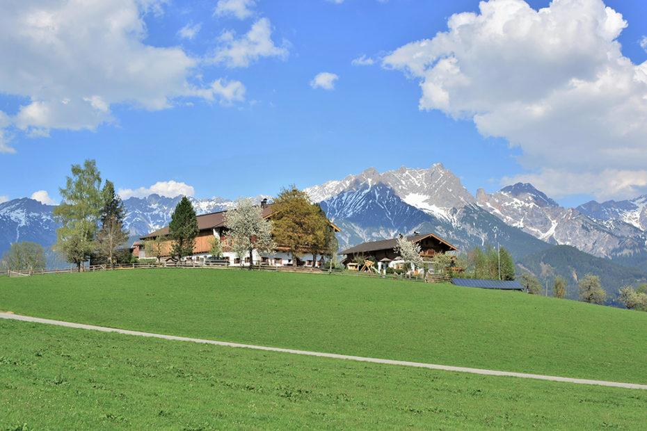 schmiderer-vorderkasbichl-Haus-SOMMER-panorama