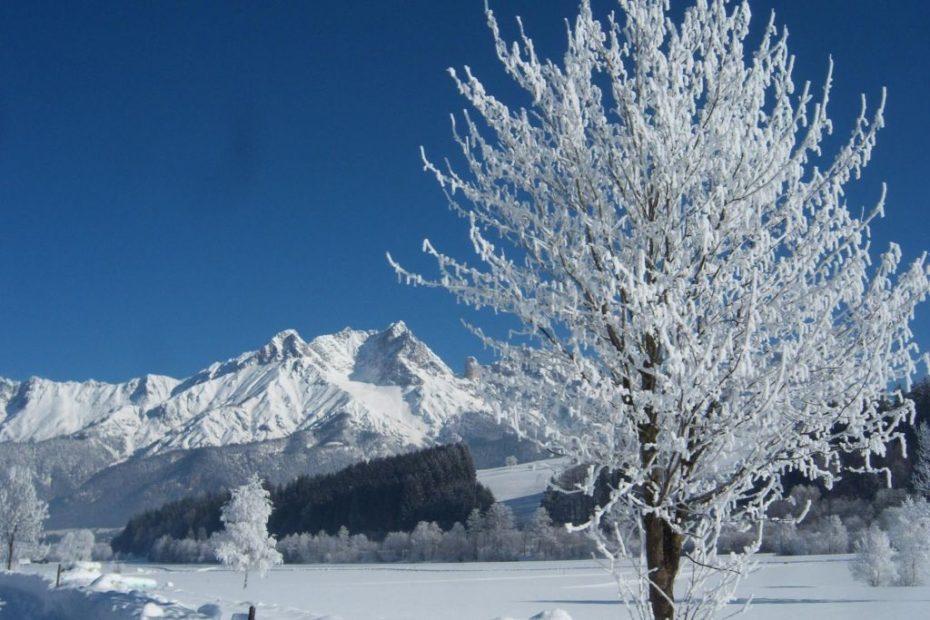 schmiderer-vorderkasbichl-winter